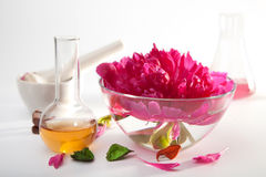 Aromatherapy set. With flower and flasks stock photo