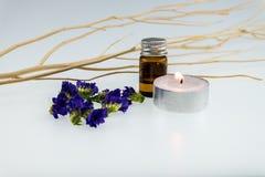 Aromatherapy Spa έννοια με το πορφυρό statice και το αρωματικό πετρέλαιο Στοκ εικόνα με δικαίωμα ελεύθερης χρήσης