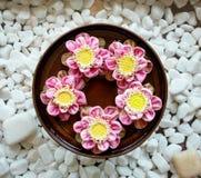 Aromatherapy spa λουλούδια Στοκ Φωτογραφίες