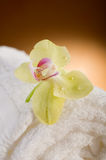 Aromatherapy and spa Stock Photo