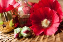 Aromatherapy and spa Stock Photography