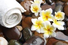 Aromatherapy spa Royalty-vrije Stock Foto