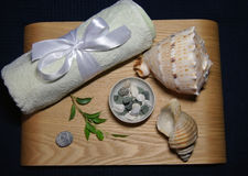 Aromatherapy in spa with light towel and shell Royalty Free Stock Photos