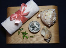Aromatherapy in spa with pink towel, green leaf, candle and shell Royalty Free Stock Images