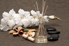 Aromatherapy spa treatment Royalty Free Stock Images
