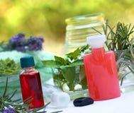 Aromatherapy - Spa treatment Royalty Free Stock Image