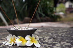 Aromatherapy sticks and magnolia flowers. Aromatherapy sticks, grey pot and magnolia flowers Stock Photo