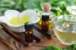 Aromatherapy treatment with herbal tea Royalty Free Stock Photos