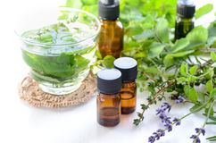Aromatherapy treatment with herbs and drink Royalty Free Stock Images