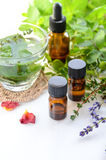 Aromatherapy treatment with herbs and drink Stock Image