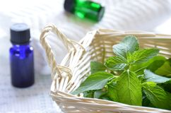 Aromatherapy treatment with mint Stock Photography