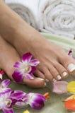 Aromatherapy Wasserbadekurort für Füße 8 Lizenzfreies Stockfoto