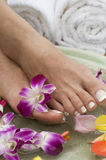 Aromatherapy water spa for feet 8 Royalty Free Stock Photo