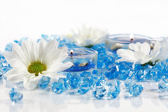 aromatherapy wellness Στοκ Φωτογραφία