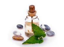 Aromatherapy y masaje Fotos de archivo libres de regalías