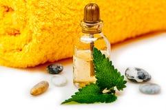 Aromatherapy y masaje Imagen de archivo libre de regalías