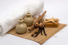 Aromatherapy y productos de limpieza Imagen de archivo