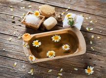 Aromatherapy zdrój ustawiający chamomile Obraz Royalty Free