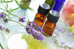 Aromatherapybehandling Arkivbild