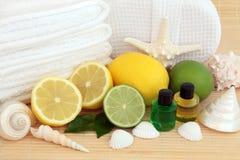 AromatherapyTreatment Στοκ Εικόνες