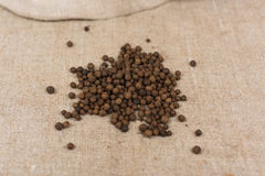 Aromatic allspice pepper. Seed on sack cloth stock photography
