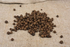 Aromatic allspice pepper. Seed on sack cloth royalty free stock image