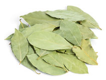 Aromatic bay leaves Royalty Free Stock Images