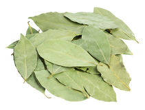 Aromatic bay leaves Royalty Free Stock Photo