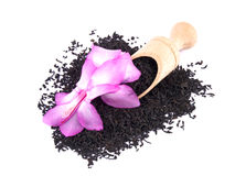 Aromatic black tea and pink flower on white Royalty Free Stock Images