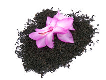 Aromatic black tea and pink flower on white Royalty Free Stock Photos