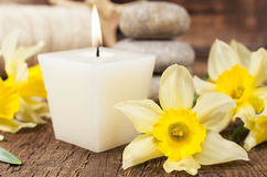 Aromatic candle and narcissus close-up Royalty Free Stock Photos