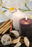 Aromatic candles burn on a dish with an orchid. Bamboo and exotic fruit Stock Photography