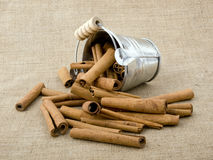 Aromatic cinnamon Stock Image
