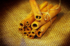 Aromatic cinnamon . Stock Image