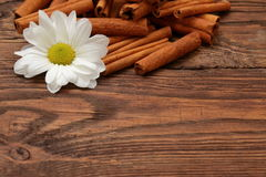Aromatic cinnamon. Cinnamon is a spice that reigns in the kitchen his fantastic scent Royalty Free Stock Images