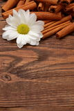 Aromatic cinnamon. Cinnamon is a spice that reigns in the kitchen his fantastic scent Royalty Free Stock Image