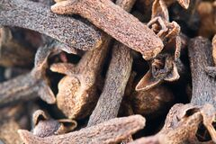 Aromatic dried cloves Royalty Free Stock Images