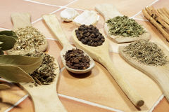 Aromatic dried herbs and seeds used as spices in cooking Royalty Free Stock Images