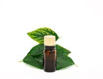 Aromatic essential oils Stock Images