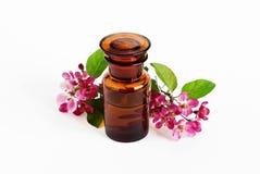 Aromatic flower oil Stock Image