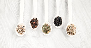 Aromatic food cooking ingredients. Black and white pepper, clove, savory, fennel seeds. Top view. Stock Images