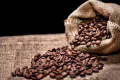 Aromatic fresh coffee beans Stock Photos