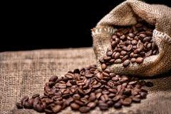 Aromatic fresh coffee beans Stock Photos