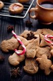 Aromatic and fresh gingerbread cookies Royalty Free Stock Photo
