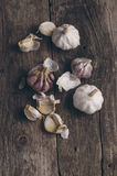 Aromatic garlic Stock Images