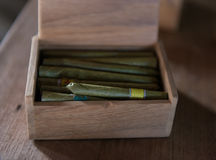 Aromatic hand made Burmeses cigars in a box Stock Images