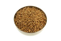 Aromatic herb : Caraway seeds Royalty Free Stock Photos