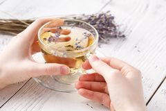 Aromatic herbal tea in glass cup holding female hands Stock Photo