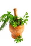 Aromatic herbs. Mortar and pestle full of various aromatic herbs stock images