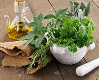 Aromatic herbs Royalty Free Stock Photos